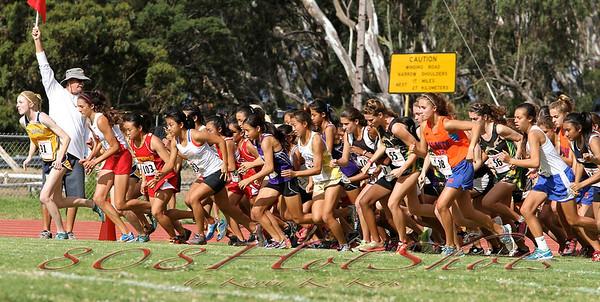 2012 HHSAA Girls Finals
