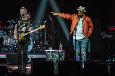 Sting and Shaggy @ The Pageant