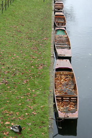 London & Cambridge