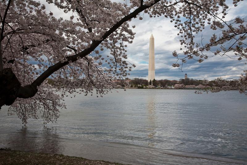 2009-04-03-Washington-DC-0161.jpg