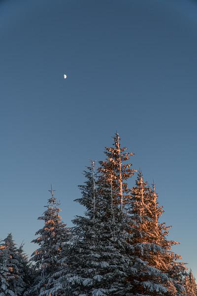 2019-12-06_SN_KS_December Snow-05259.jpg