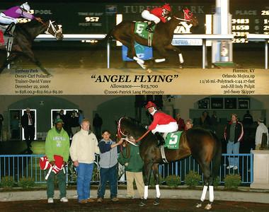 ANGEL FLYING - 12/22/2006