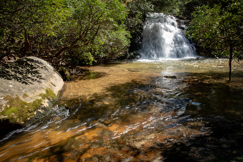 Headwaters State Forest - Gordon Mountain & Graveley Falls  (3.4 miles; d=4.30)