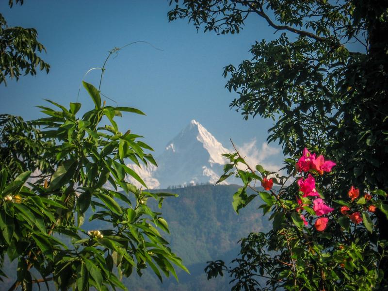 trekking-nepal-32.jpg