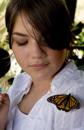 This butterfly hung out on Amy the entire time.