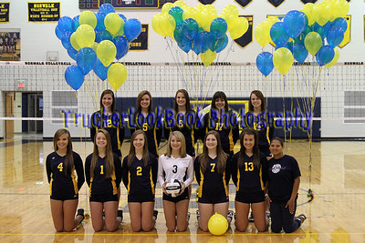 2013 NHS Ladies in Blue Volleyball