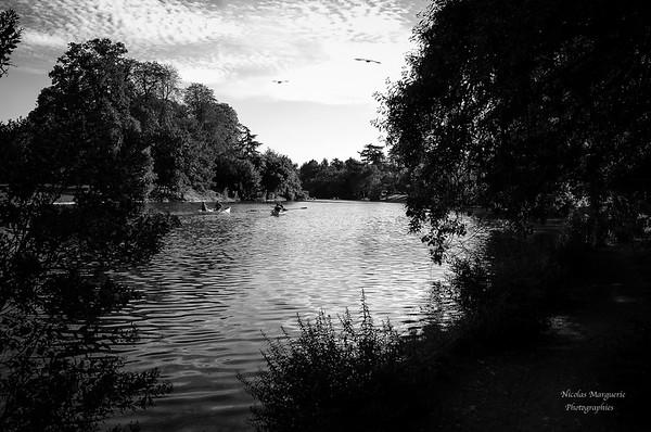 Paris, Septembre 2016, Bois de Boulogne, En Attendant L' Automne