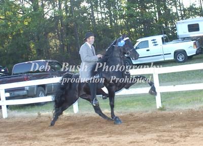 CLASS 27   OPEN WALKING HORSE SPEC
