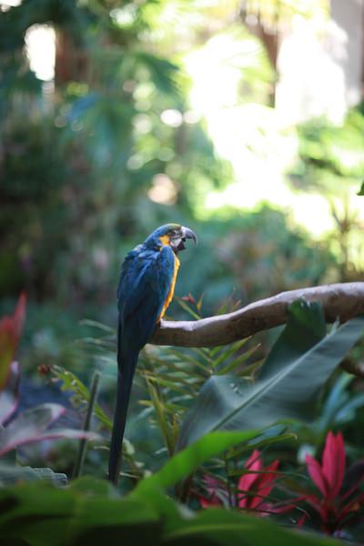 Kauai_D5_AM 243.jpg