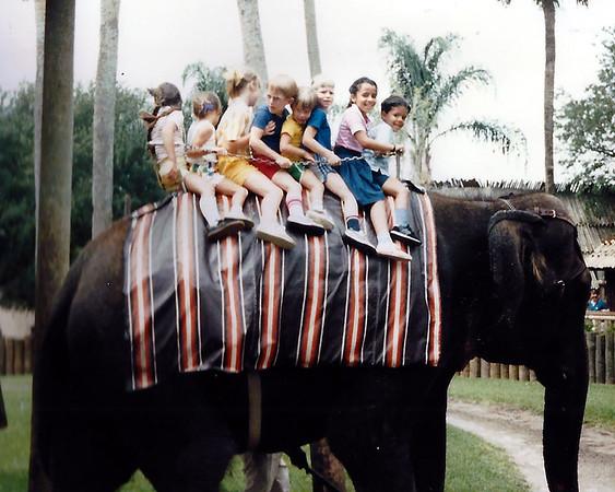 1986 Tampa Busch Gardens