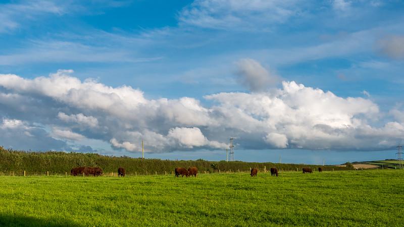 Devon-England-8.jpg