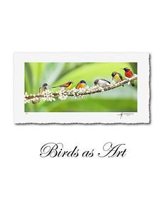 Birds at Manila FAME