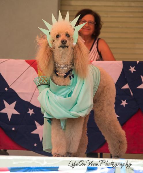 Yankee Doodle Dog Parade 2017