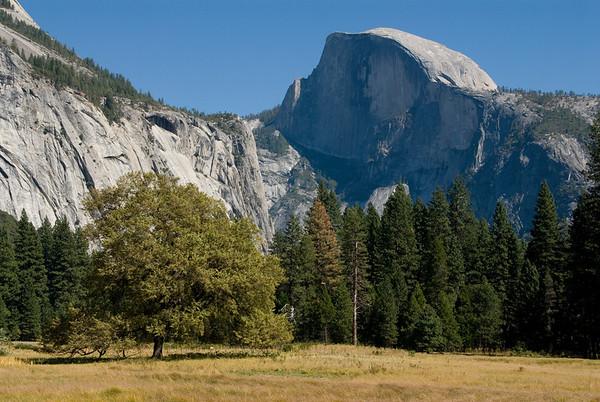 16. Yosemite