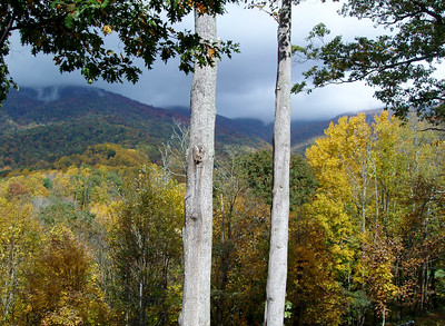 2010 Autumn Mountains and Elk Waller and clouds