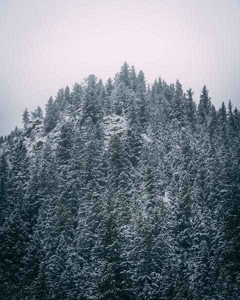 Winter Time Mt Evans Wilderness-1.jpg