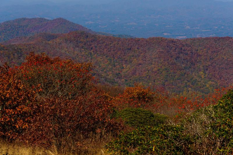 Asheville (94 of 195).jpg