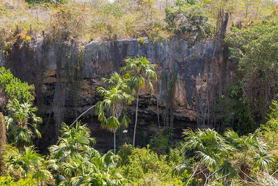 Barbuda - Nature