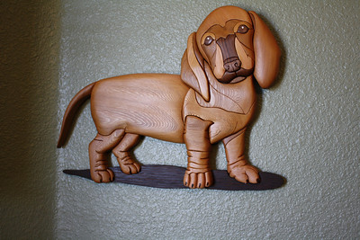 Dachshund Puppy for Diana