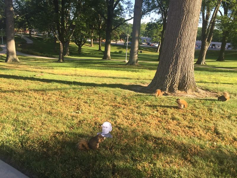 Flat Chauncey and squirrels.jpeg