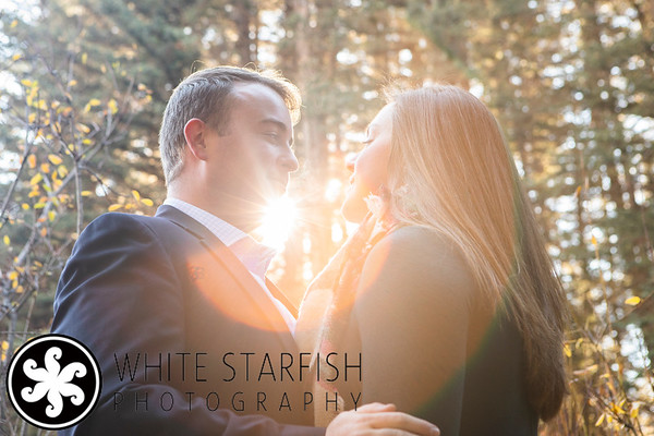 Vail Proposal - Lionshead - Carter and Darby