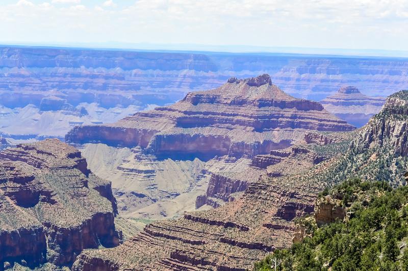 2019 Grand Canyon-221.jpg