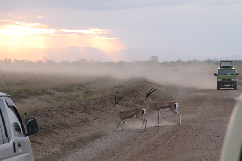 Kenya 2019 #2 1624.JPG