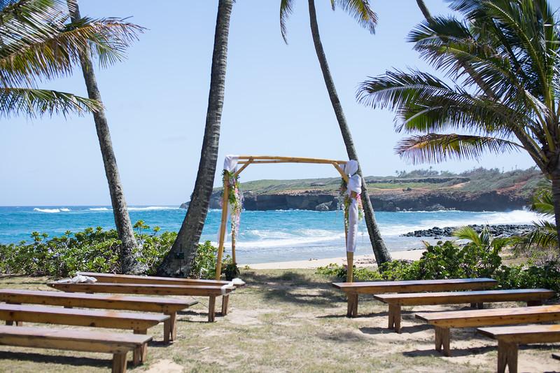 gillin beach kauai wedding-1.jpg