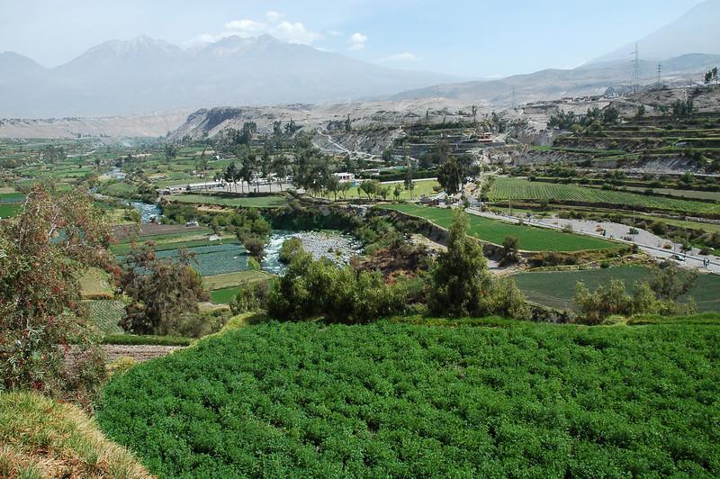 Peru Ecuador 2007-037.jpg