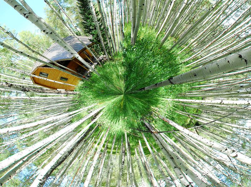 8-14 global panarama.jpg