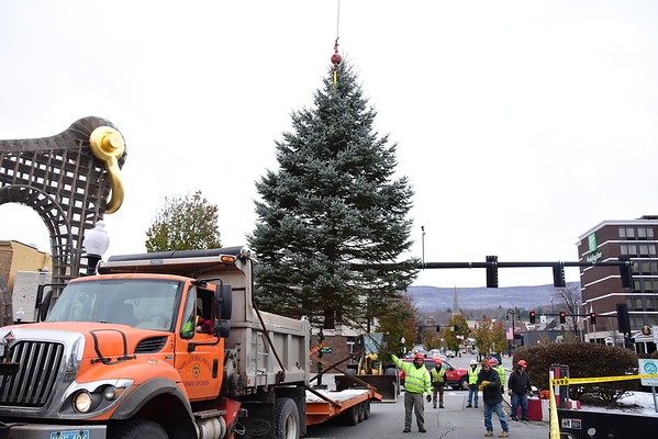 2019 NA Holiday Tree installation - 111419