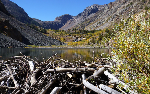 20121010 Fall Walk in Lundy Canyon