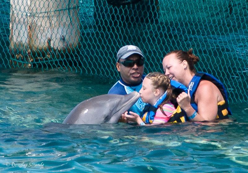 Dolphin encounter: Sophia