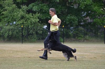 Niagara Hundesport Club Trial July 1