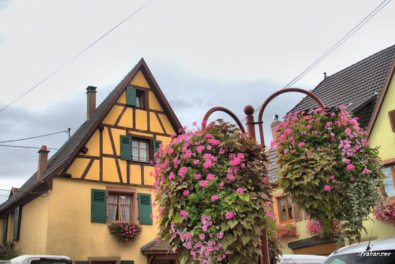 Alsace Wine Route, Alsace, France, 09/02/2018 This work is licensed under a Creative Commons Attribution- NonCommercial 4.0 International License