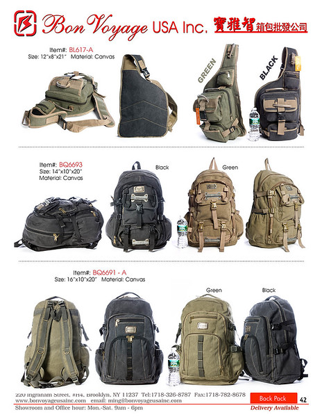 BackPack p42-X2.jpg