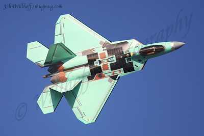 F-22 Raptor Nest Photos