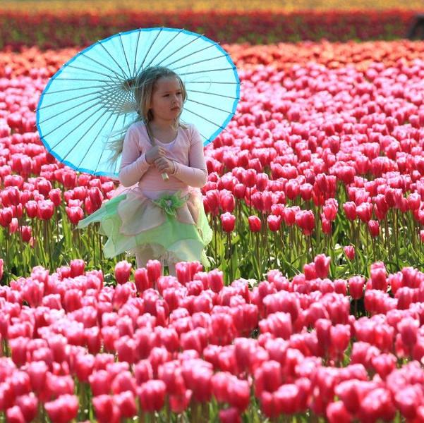 Girl umbrella 3603c.jpg