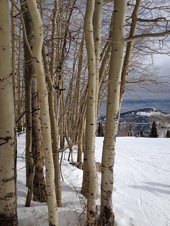Ski Videos