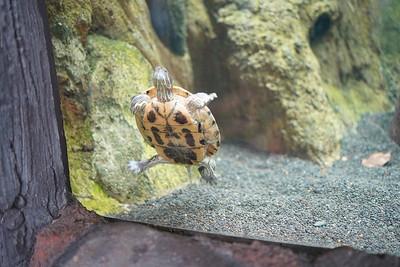 201213 - Zoo