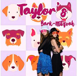 Taylor's Bark-Mitzvah