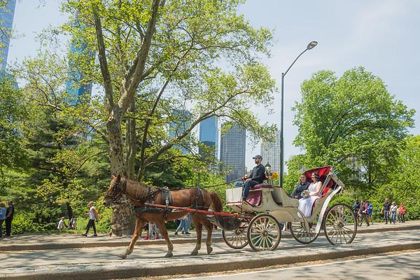 Central Park Wedding - Priscilla & Demmi