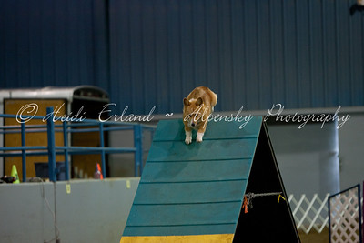 Top Dog CPE - Jackpot, Level 3 - 10/23/11