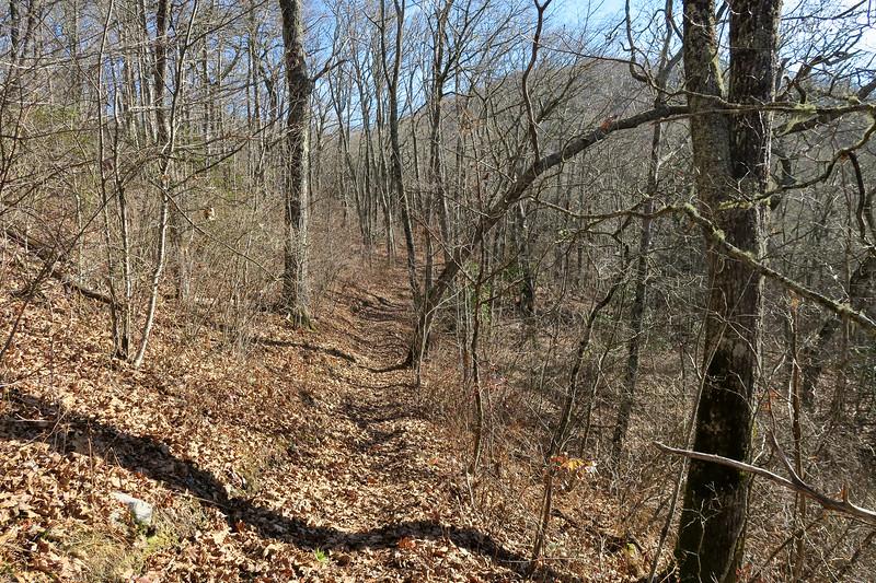 Mountains-to-Sea Trail -- 4,890'