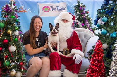 2019 Santa Paws - Round 1 - SATURDAY 23.11.19