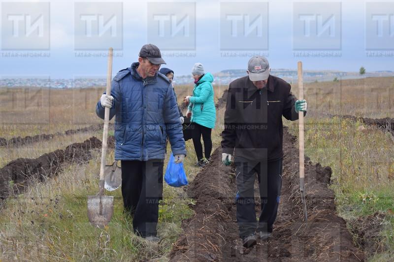 05.10.2018 Посадка деревьев автор: Тансылу Саниева