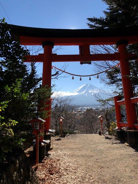 Shrine Torii & Mt.Fuji View