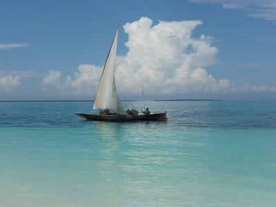 Zanzibar 2012-2013