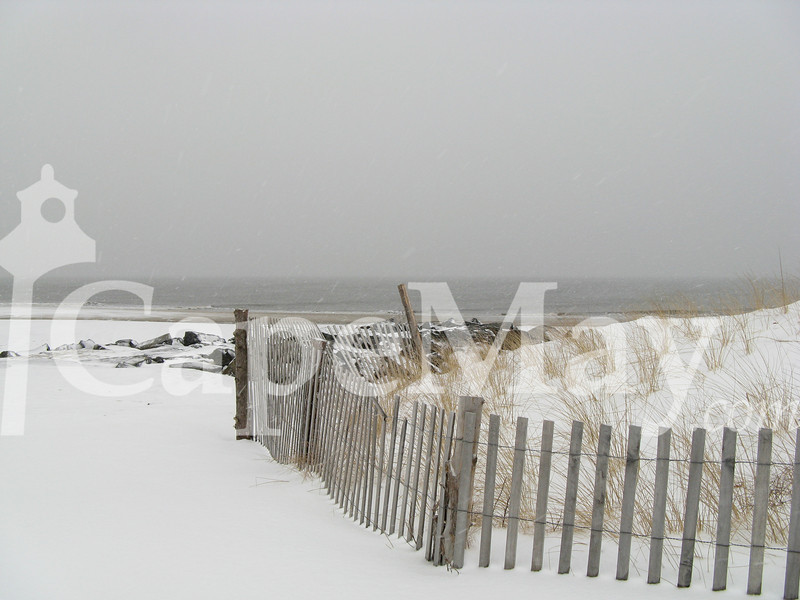 january242008_snowpics 006.jpg