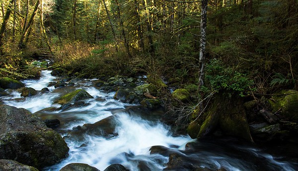 Woody Trail Part 1 - Wallace Falls State Park, Washington, November 28, 2015